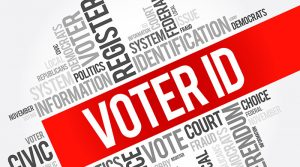 voter-information-banner